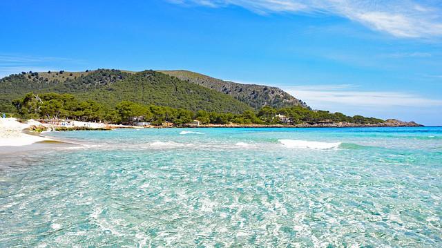 Mallorca Pauschalreisen Angebote